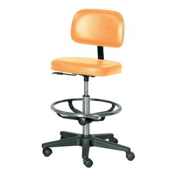 Practitioner Chair Black - foot ring