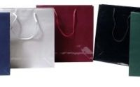 Large Gloss Bags